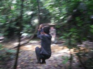 The Tarzan experience.