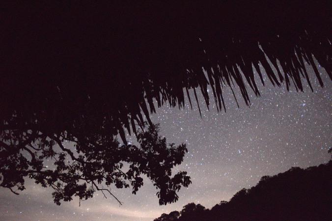 night jason