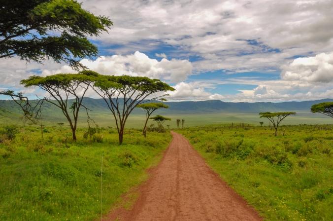 Tanzania March 5-14 180