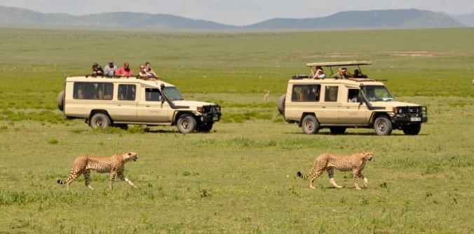 Tanzania March 5-14 547
